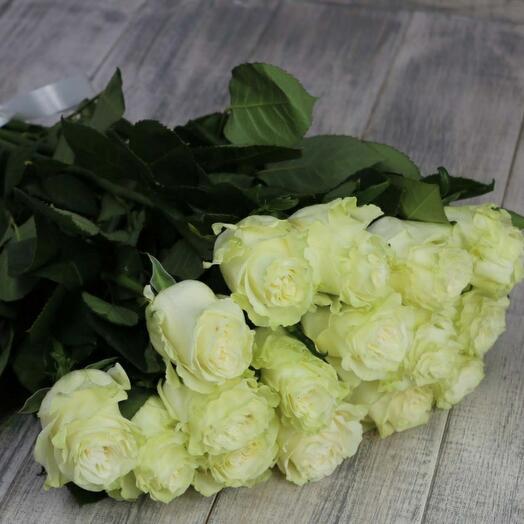 Роза Эквадор Мондиаль 15 штук