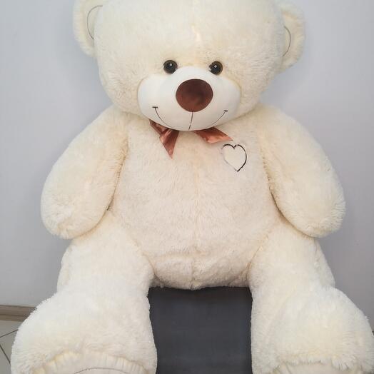 Большой медведь2