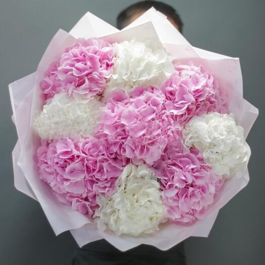 A bouquet of delicate hydrangeas