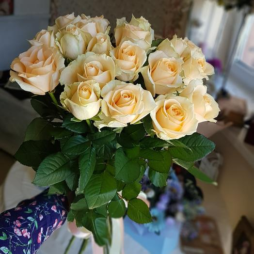 17персиковых роз