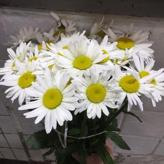 Букет из ромашки: букеты цветов на заказ Flowwow