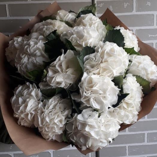 11 гортензий: букеты цветов на заказ Flowwow