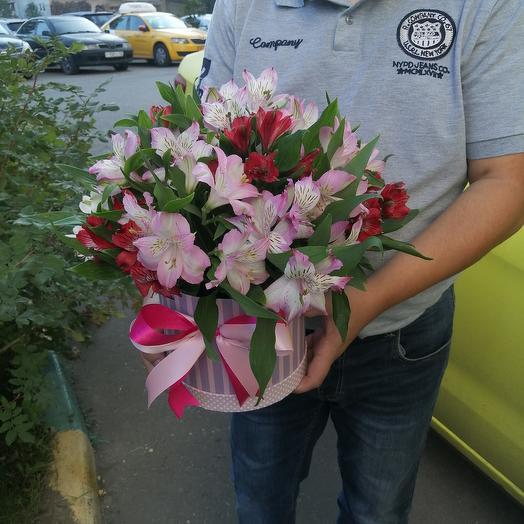 Цилиндр альстромерий: букеты цветов на заказ Flowwow
