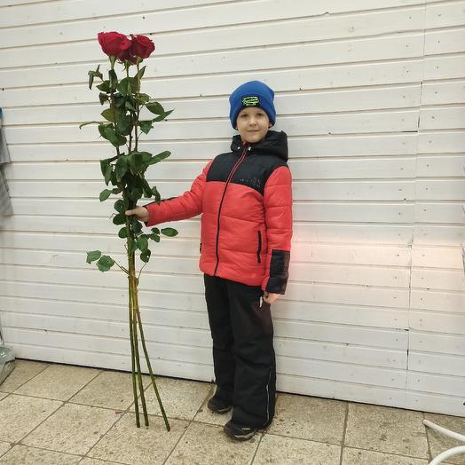 15 высоченных роз: букеты цветов на заказ Flowwow