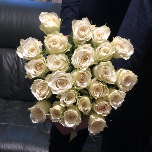 Розы белые эквадорские 25 Шт: букеты цветов на заказ Flowwow