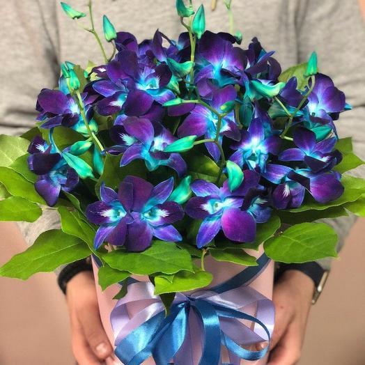 Орхидея синий в каробке