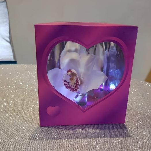 Орхидея в коробке с подсветкой
