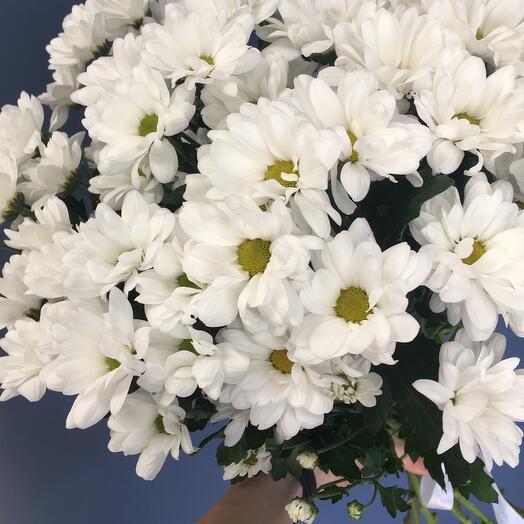 Букет из кустовой белой хризантемы