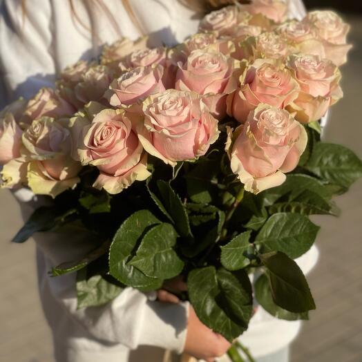 Эквадорская Роза 80 см
