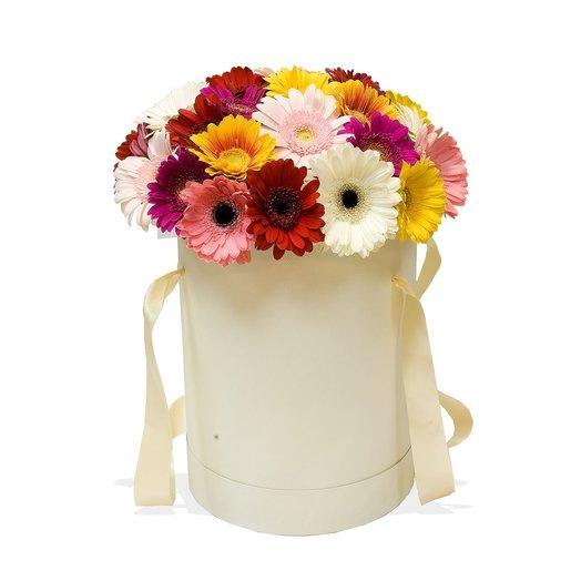 Цветы в шляпной коробке Любимые герберы: букеты цветов на заказ Flowwow