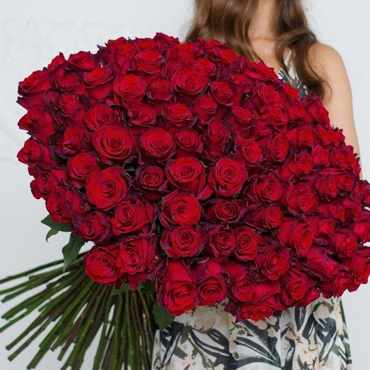 101 Красная Эквадорская Роза 80см