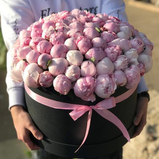 Пионы.Коробка из 101 розового пиона. N422: букеты цветов на заказ Flowwow