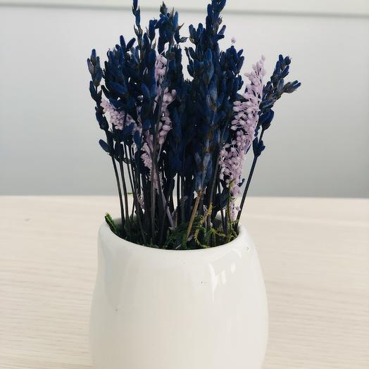 Букет 18 из стабилизированной лаванды: букеты цветов на заказ Flowwow
