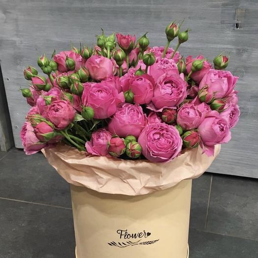 Виолет: букеты цветов на заказ Flowwow