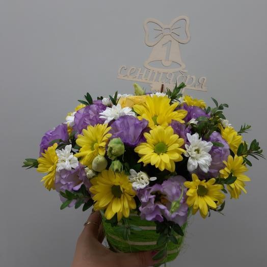 Композиция в кашпо из альстромерий: букеты цветов на заказ Flowwow