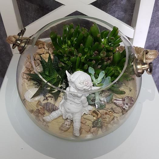 Флорариум ВИП суккуленты: букеты цветов на заказ Flowwow