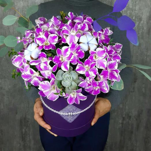 Зимняя сакура: букеты цветов на заказ Flowwow
