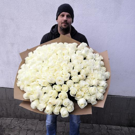 151 эквадорская роза Proud: букеты цветов на заказ Flowwow