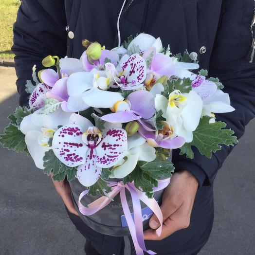 Орхидеи в бархатной коробке: букеты цветов на заказ Flowwow
