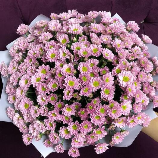 Букет розовых ромашек