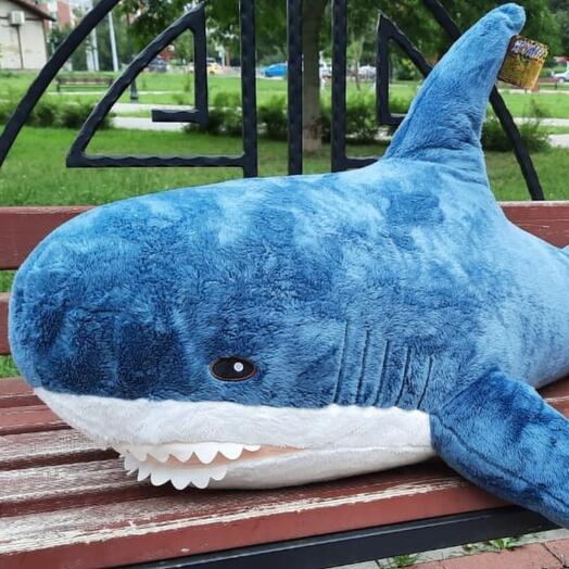Акула 1 метр