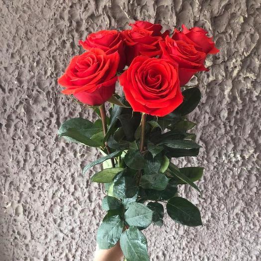 Крокус заказать доставка роз цена за букет цветов букетов