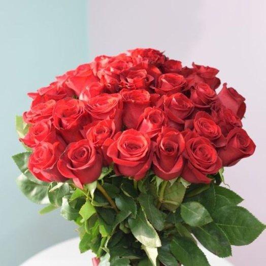 31 роза Фридом