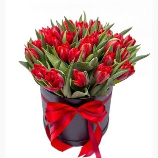 Коробка с тюльпанами Ночная феерия