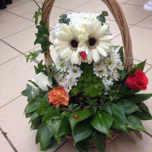 Сова: букеты цветов на заказ Flowwow