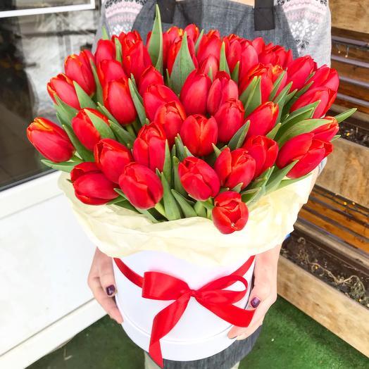 49 тюльпан в коробке
