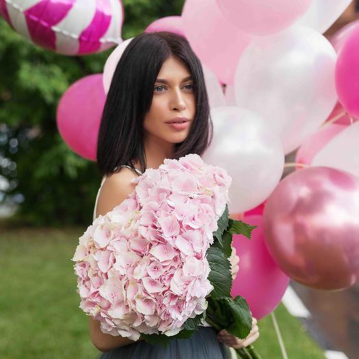 5 Гортензий розовых: букеты цветов на заказ Flowwow