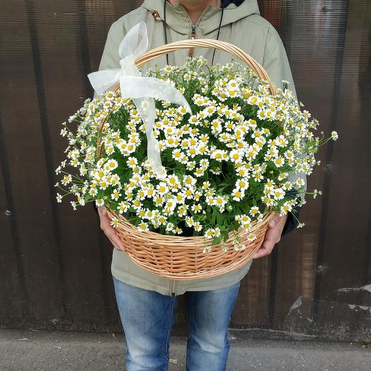 Samoi: букеты цветов на заказ Flowwow