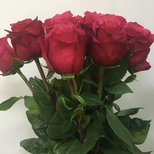 Роза малиновая 11 шт: букеты цветов на заказ Flowwow