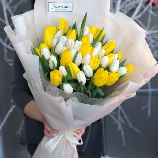 51 желто-белый тюльпан