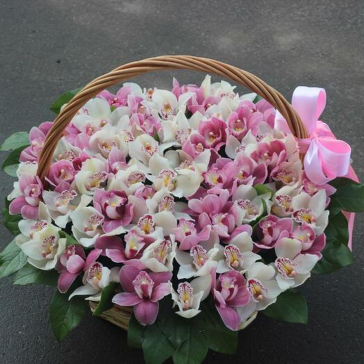 Корзина с орхидеями Цимбидиум