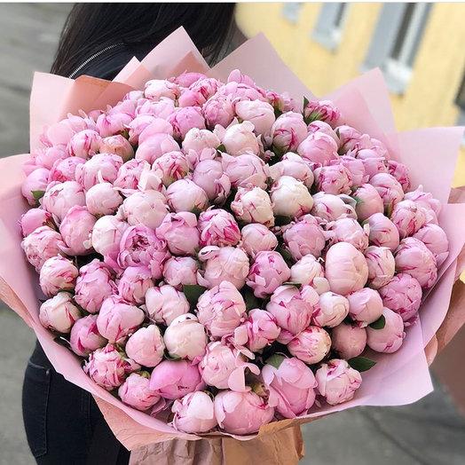 101 розовый пион Сара Бернар: букеты цветов на заказ Flowwow