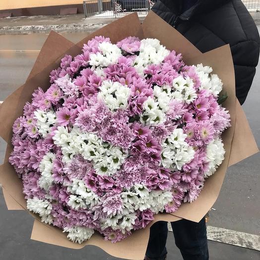 Purples⚡️: букеты цветов на заказ Flowwow