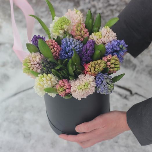 15 гиацинтов в коробке: букеты цветов на заказ Flowwow