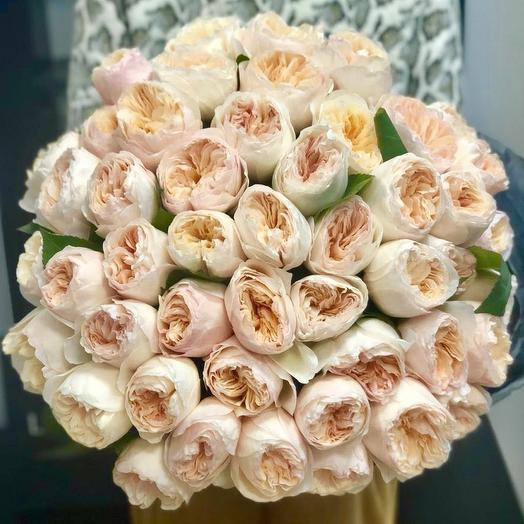 Джульетта Девида Остина / 51шт: букеты цветов на заказ Flowwow