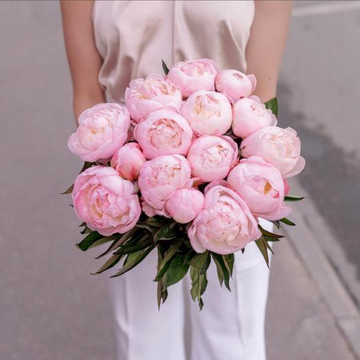 Букет из 15 розовых пионов: букеты цветов на заказ Flowwow