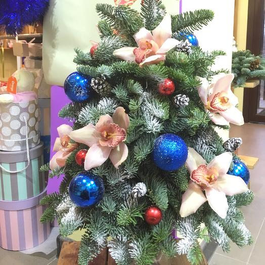The Miracle Tree: flowers to order Flowwow