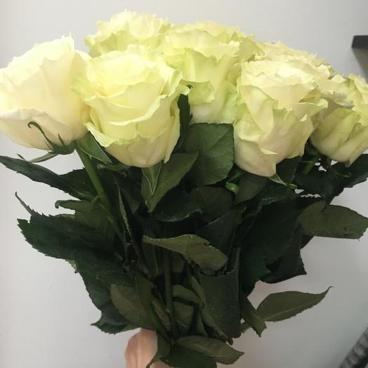 Роза Мондиаль 15 шт: букеты цветов на заказ Flowwow
