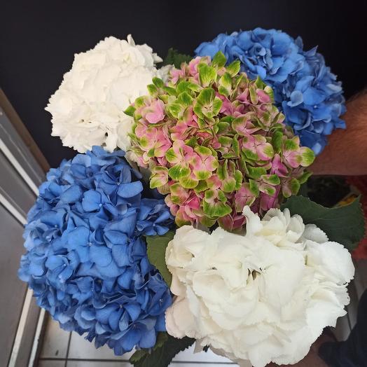 Гортензия 80 см: букеты цветов на заказ Flowwow