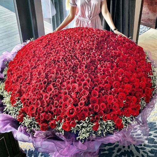 1001 Роза мечта