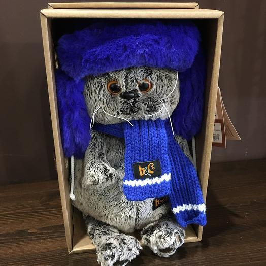 Кот Басик в синей меховой шапке с шарфом