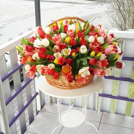 Корзина с 251 тюльпаном
