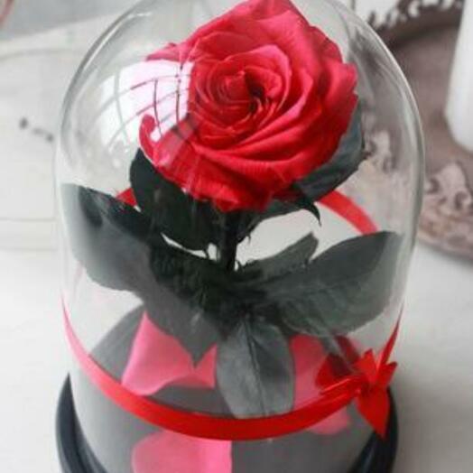 Роза в колбе Premium Фуксия