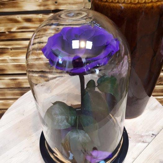 Волшебная роза: букеты цветов на заказ Flowwow