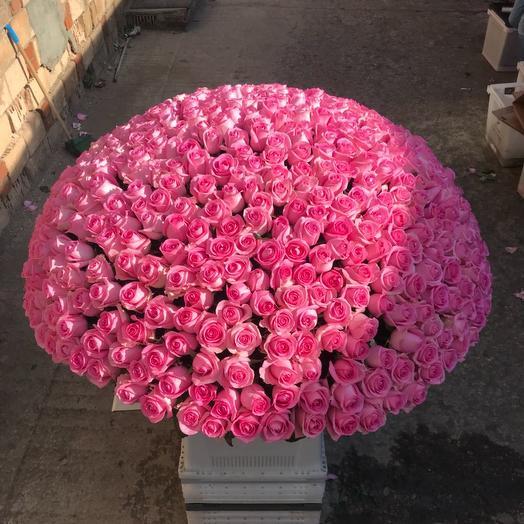 Розовое танго 😍 😍