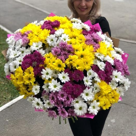 35 хризантем микс: букеты цветов на заказ Flowwow